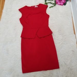 👻 Calvin Klein | Dress
